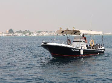 Treble Hook Fishing Charters