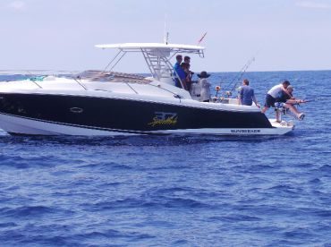 Fishing in Mallorca - Sunseeker, Palma