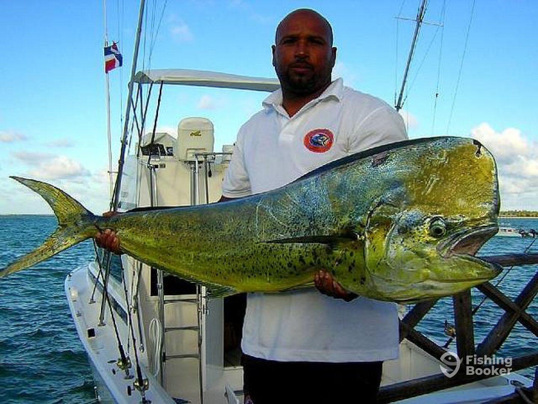 Fishing Punta Cana – Intrepido