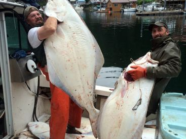Action Alaska Sportfishing, Sitka