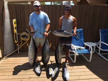 yellow fin tuna on 36 hour charter