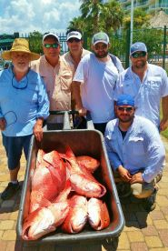Big Box Of Red Snapper