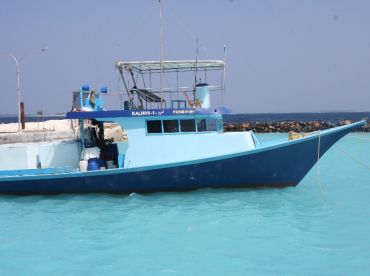 Atoll Fishing Maldives – Dharavandhoo
