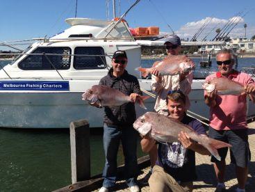 Spring Snapper Fishing Port Phillip Bay