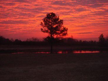 Sunrises are SPECTACULAR!