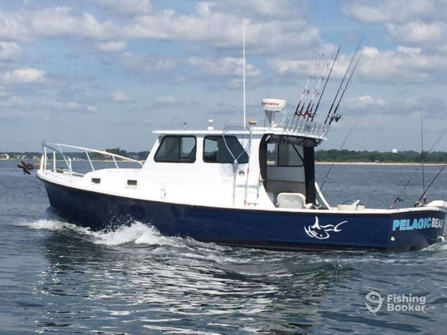 Pelagic beast fishing charters llc norwalk ct for Ct fishing charters