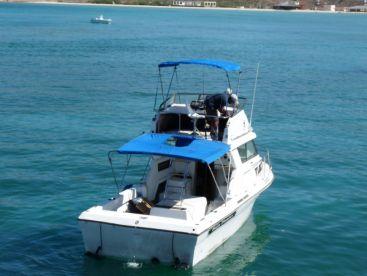 Baja Pirates Fleet - The Wildcat
