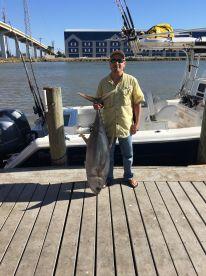 62# Yellowfin tuna