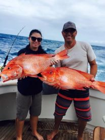 Bottom fishing for red's on the Great Barrier Reef