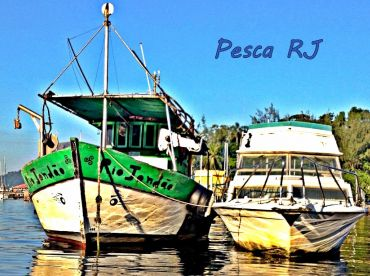 Pesca RJ, Niterói
