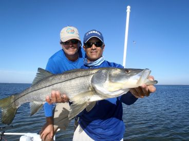 Over slot snook