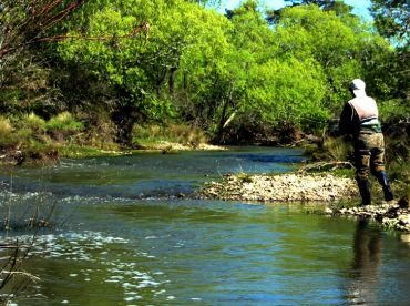Tasmania has trout streams and rivers,