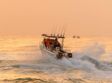 Shelly On Sea Charters