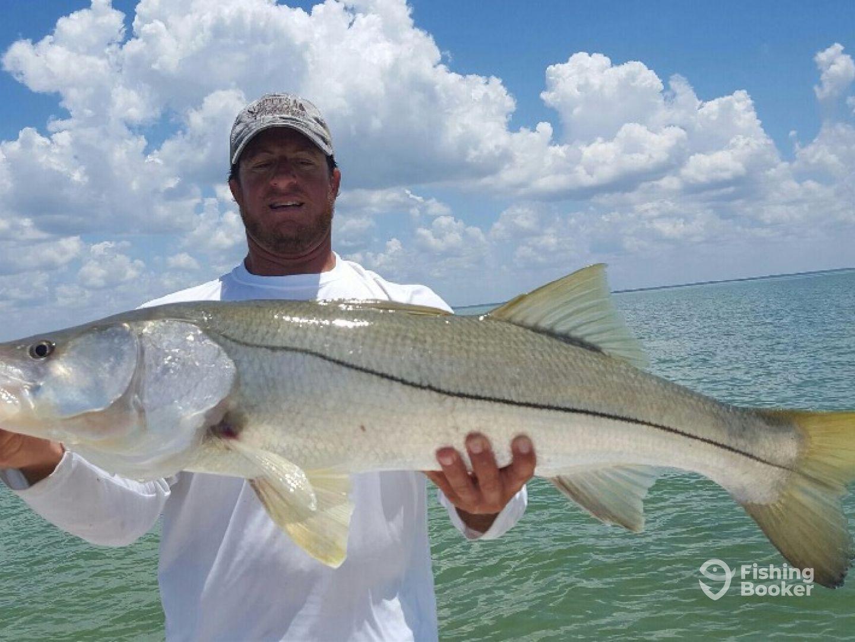 joe snook guide service marco island fl fishingbooker
