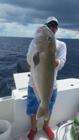 big golden tilefish