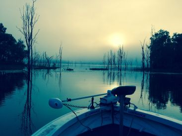 Beautiful foggy morning on Lake Monduran Dam just as the sun peeps through.