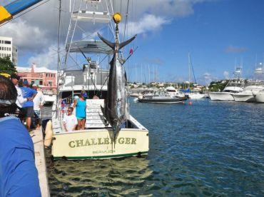 Challenger Charter Fishing Bermuda