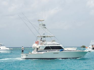 Sea-iesta - 54' Bertram