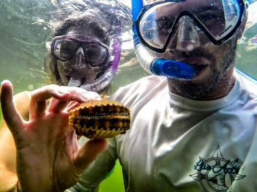 Great scalloping in the summer months!