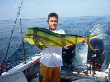 Pesca En Vallarta - Marshell PV