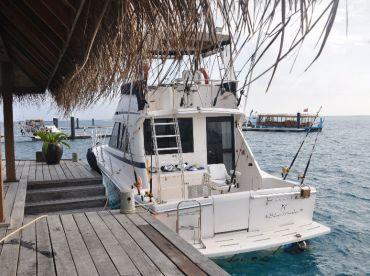 Silver Marlin, Malé