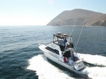 Fish Hunter Sport Fishing Charters