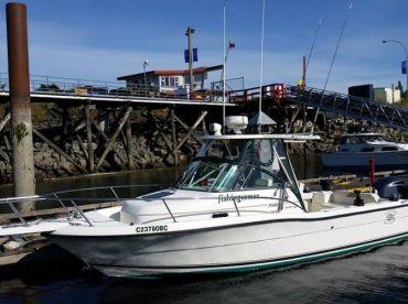 Island Pursuit Sport Fishing , Tahsis