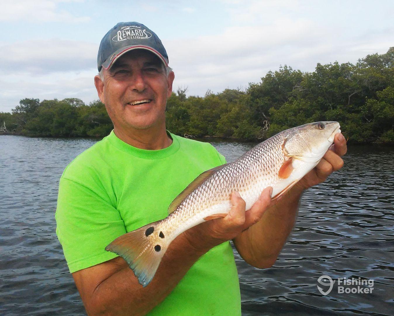 Fish on sport fishing port charlotte fl fishingbooker for Port charlotte fishing charters