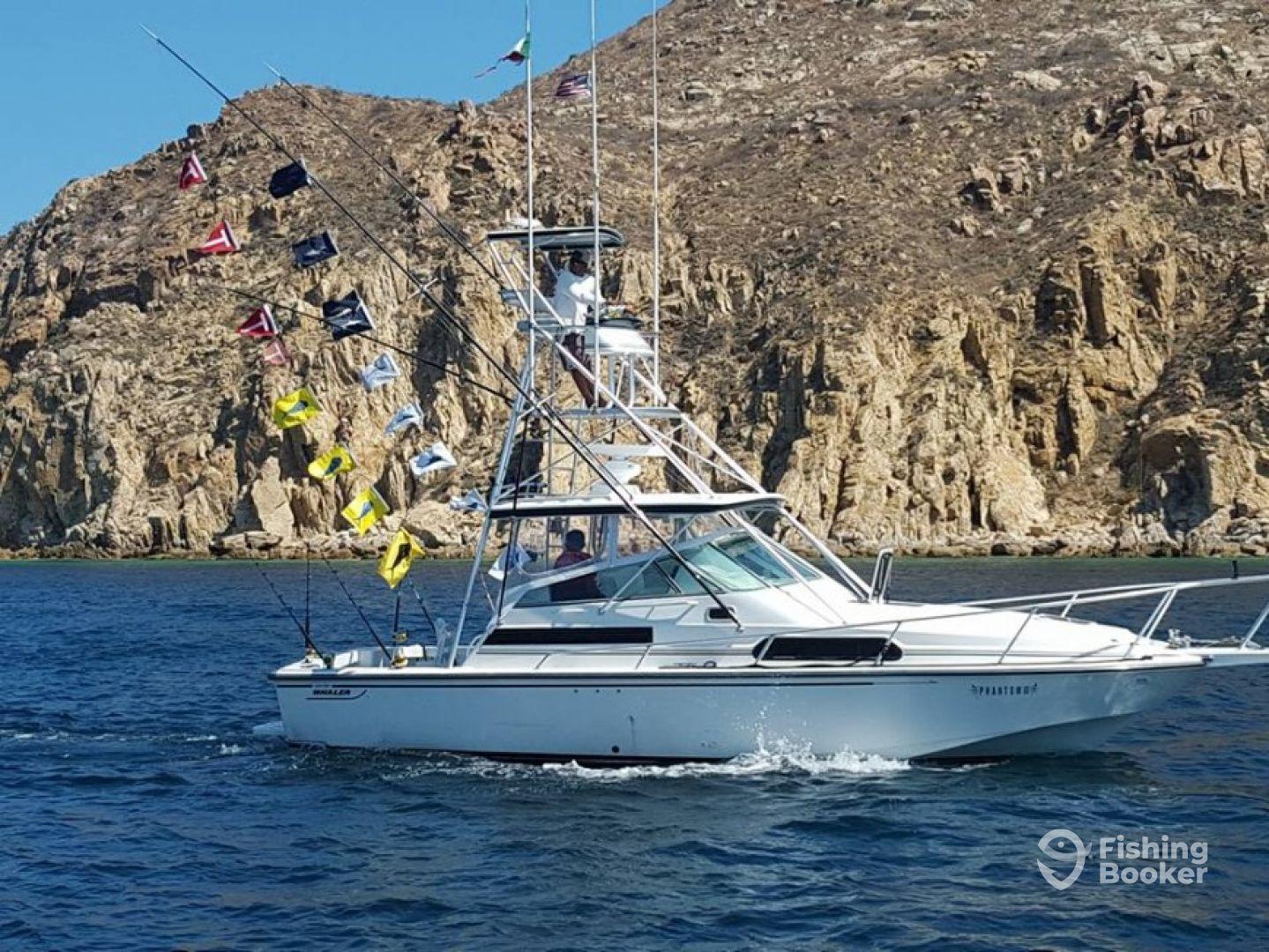 Phantom fishing cabo phantom iii cabo san lucas mexico for Fishing cabo san lucas