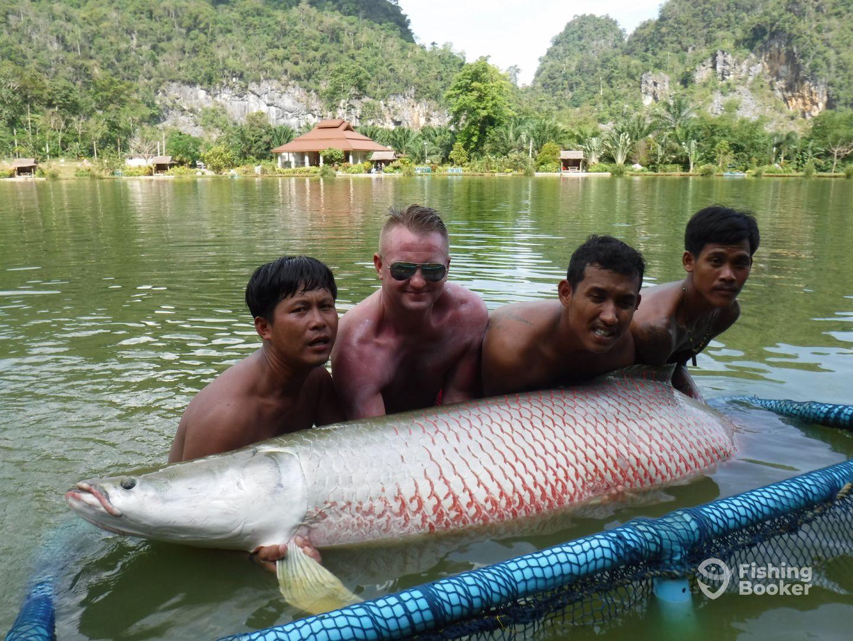 Arapaima Monster Fishing Phuket