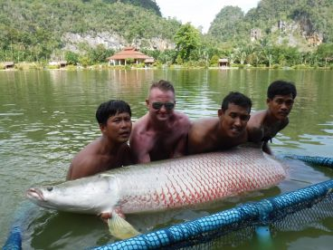 Arapaima Monster Fishing Phuket