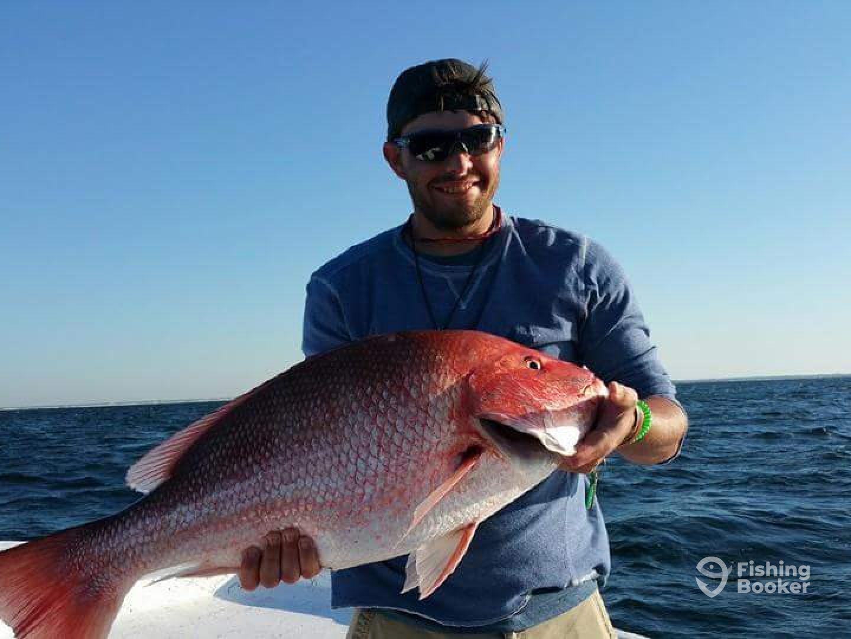 Emerald c fishing charters orange beach al fishingbooker for Perdido key fishing