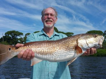 Nice overslot Redfish caught in Clearwater, FL with Capt Will Burbach.