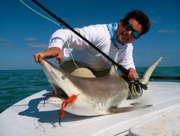 Spinner Shark on Fly