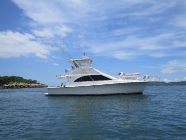 First class fishing on board of this beautiful 48 ft Ocean Yacht.