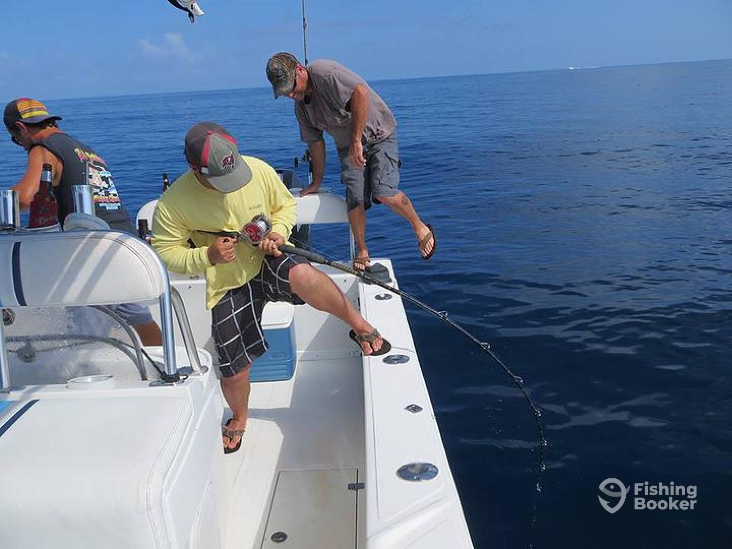 fish pro charters fish guaranteed madeira beach fl