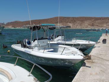 Baja Pirates Fleet  - 23ft Triumph