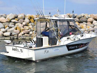 Abelfishing Means Big Salmon