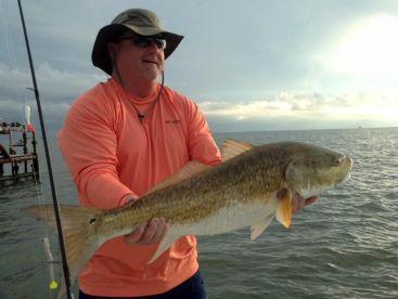 Screaming Reels Fishing Charters, Pointe A La Hache