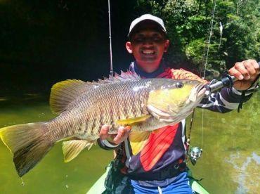 Papuan spottail bass