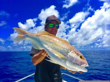 Barra2Billfish Fishing Charters , Airlie Beach