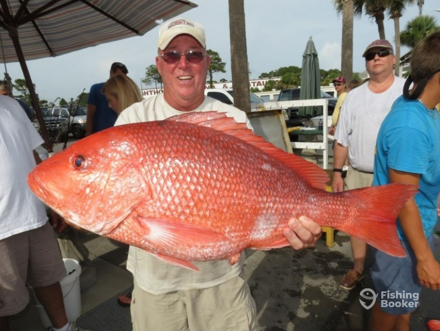 Capt ellis charters panama city beach fl fishingbooker for Snapper fish florida