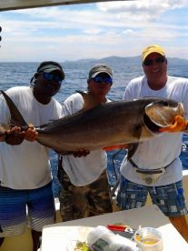 Catch of the Day Amberjack