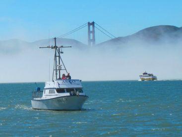 Argo Sportfishing