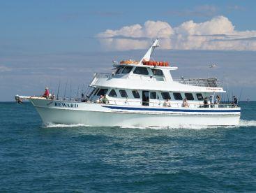 Reward Fishing Fleet - Party Boat