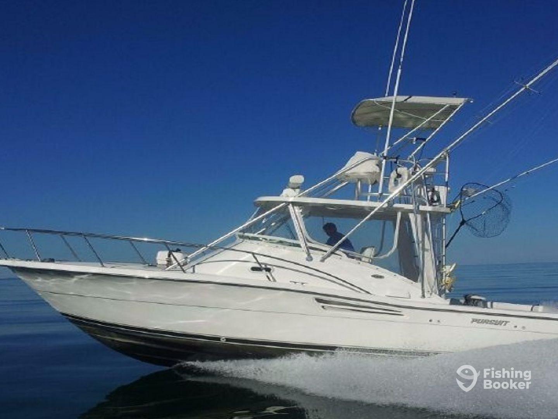 PM Charter Marine Fishing Mallorca