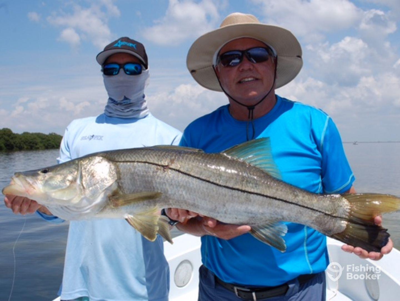 Yachtfish fishing charters st petersburg fl fishingbooker for St petersburg fishing charters