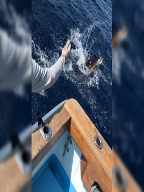 Alpha Mike Sport Fishing, Puerto Jiménez