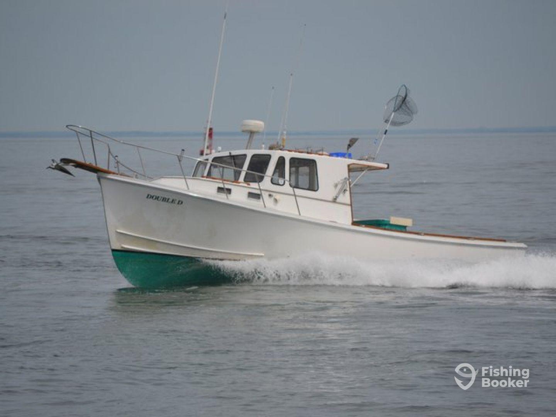Double d charters montauk ny fishingbooker for Ny fishing charters