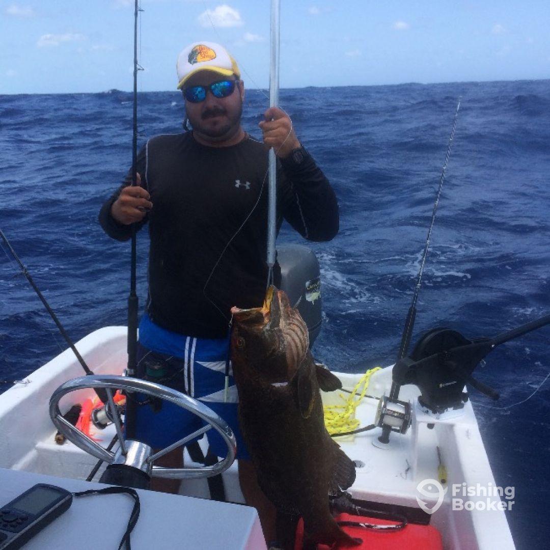 Living a dream sport fishing puerto morelos mexico for Puerto morelos fishing